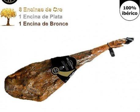 Jamón de Bellota pata negra. Uno de los mejores jamones pata negra de España