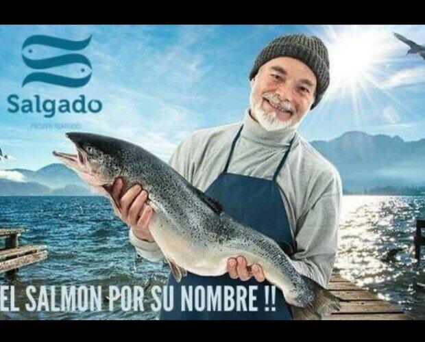 Pescado Fresco. Salmón Fresco. Salmón noruego de la mejor calidad
