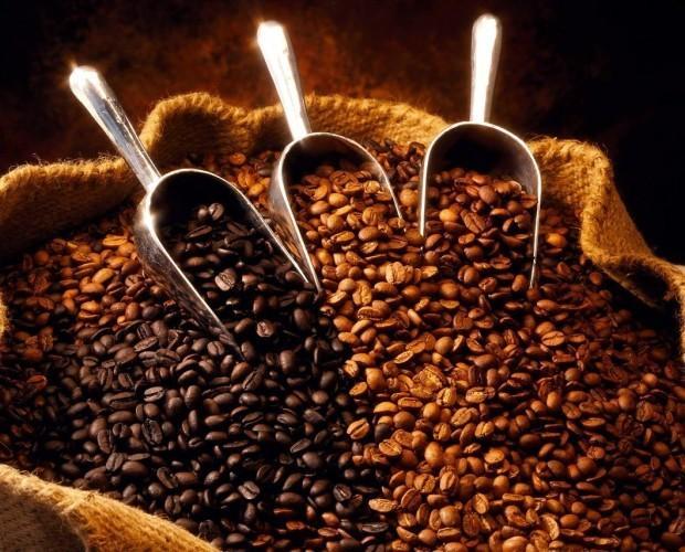 Café artesano. Cafés de calidad