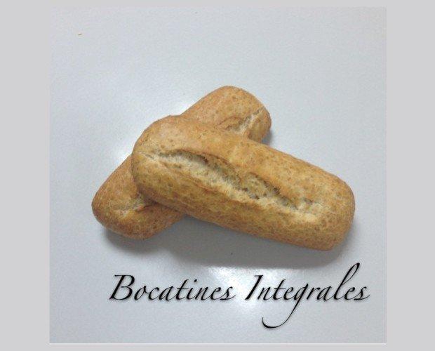 Bocatines