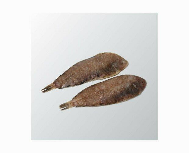Acedía de Trasmallo. Es un pescado blanco muy consumido por sus propiedades nutritivas y precio