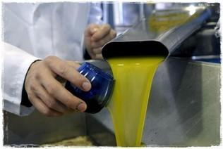 Almazara. Cuidadosa elaboración del aceite de oliva extra