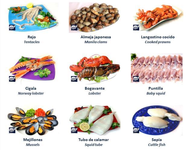 Mariscos y Moluscos. La mayor variedad y gran calidad