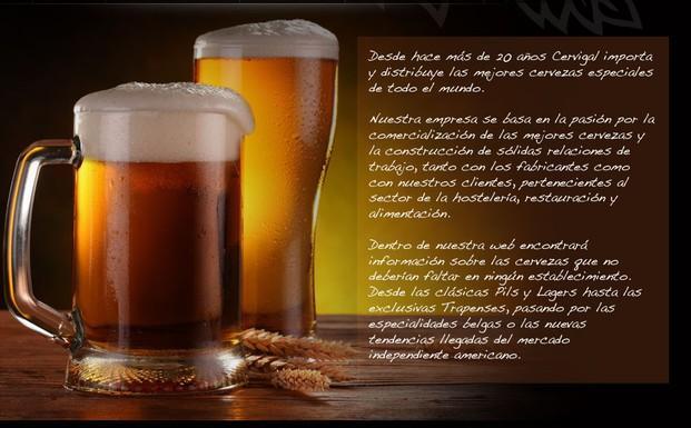 Distribuidor Cerveza. Distribuimos al sector horeca