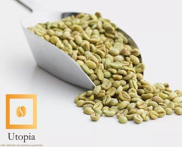 Cafè Verde. cafè verde de especialidad con 86.3 pts en la SCAA de Nueva York origen: Mèxico Altitid: 1200msnm Secado natural (Gourmet)