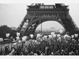 Fotografías Paris