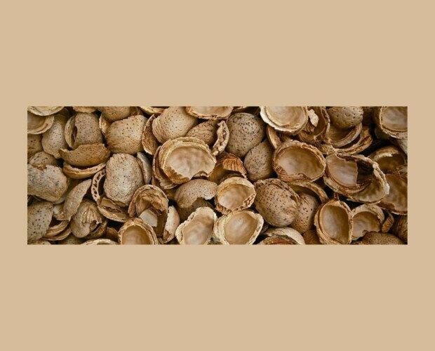 Cáscara de Almendra. Este formato es adecuado para el gran consumo industrial y ganadero