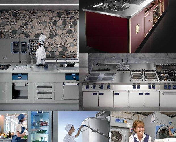 Electrolux Professional. Cocina modular Hornos  Sistemas lavado vajilla Frio almacenaje y Abatidores Maquinaria de procesamiento Sistemas de Lavandería Cocinas Thermalin