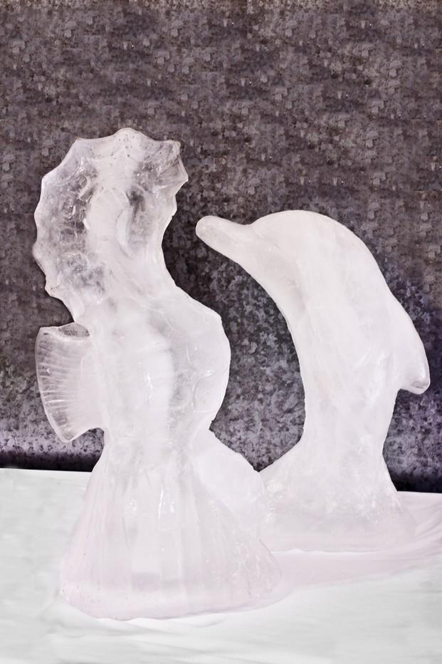 Esculturas de hielo. Varios modelos, ideal para eventos