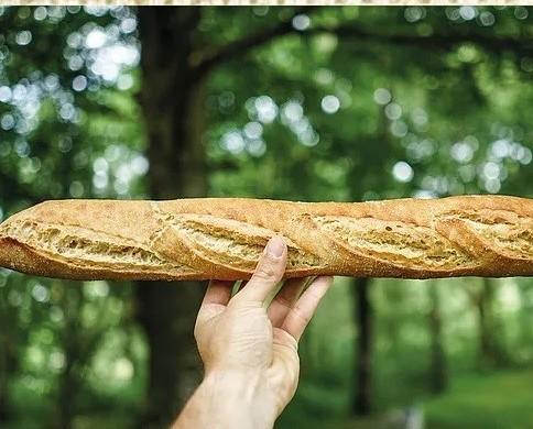 Baguette. Pan ecológico para la mesa de todos los hogares