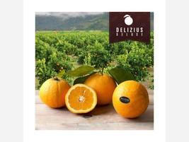 Naranjas Deluxe Lane