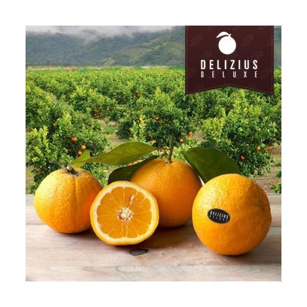 Naranjas Deluxe Lane. De primera calidad