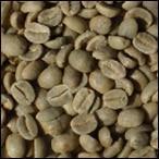Proveedores de Café. Seleccionamos las mejores materias primas.