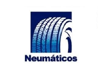 Software. Programa de gestión para talleres mecánicos y de neumáticos