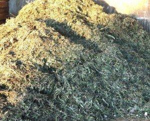 Combustible Industrial.Disponemos de la mejor adaptación a los sistemas de extracción de la hoja de olivo.