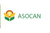 Asocan
