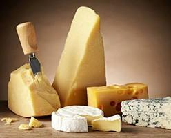 Quesos. Mezclas de quesos y preparados lácteos