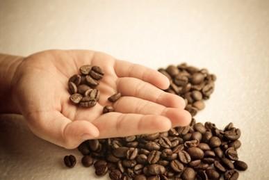 Máquinas de Café. La mejor calidad, mejor precio del mercado.