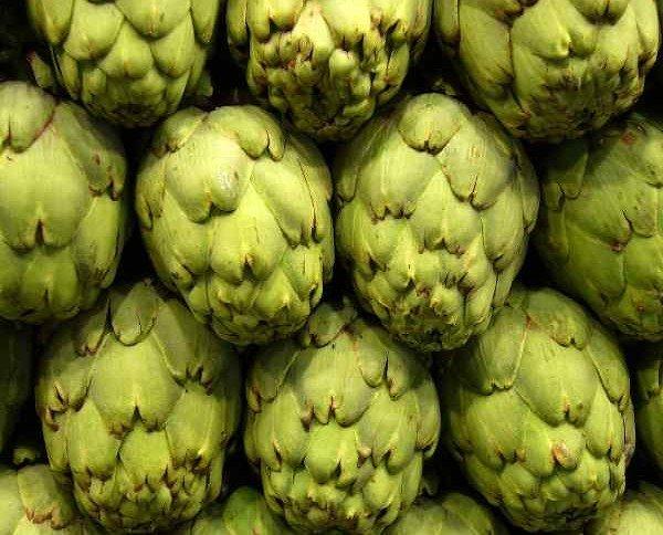 Alcachofas.Calidad al mejor precio