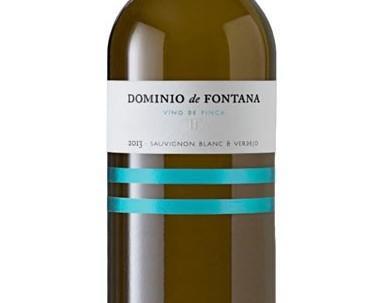 Vino Blanco. Vino Blanco Dominio del Fontán