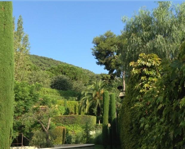Diseño de Jardines y Paisajismo.Somos profesionales del diseño de jardines