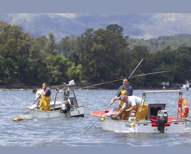 Pescadores. Extracción de almejas en la Ría de Arosa