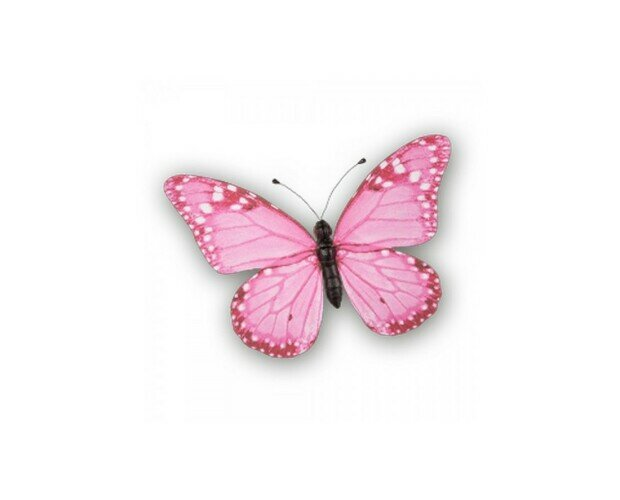 Mariposa rosa. Bonita mariposa rosa de 20x15cm