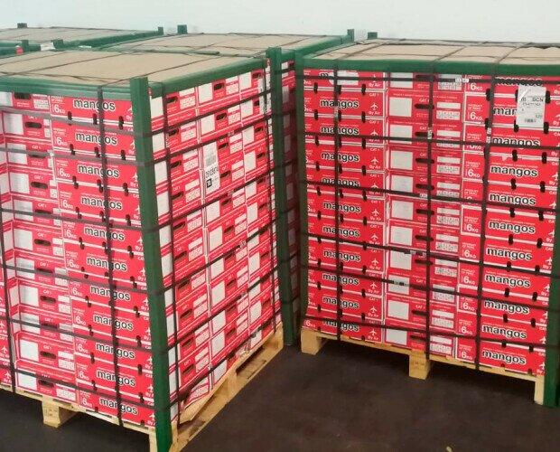 Palets Mango aéreo 88 cajas. Mango importación aéreo de Piura (Perú). Base 8 cajas.. Altura 11 pisos. !,60 m.