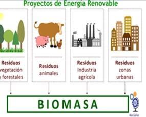 Bio Masa. Proyecto e instalación de Quemadores de Bio Masa