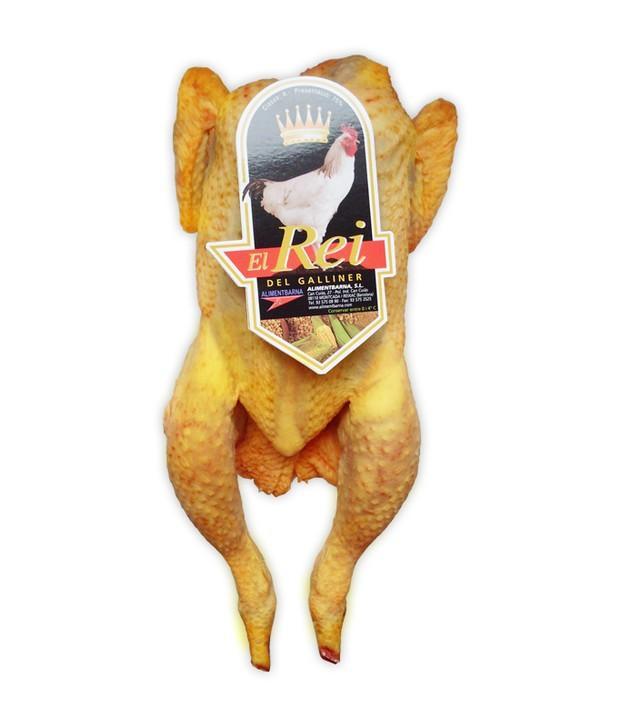 Pollo . Pollo amarillo y blanco