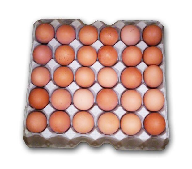 Huevos. Huevos frescos