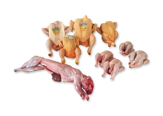 Carnes de aves. Contamos con pollo, pavo, perdiz y pato entre otros