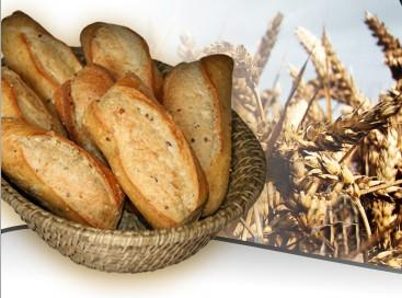 Proveedores de harina. Varios tipos de harina de trigo