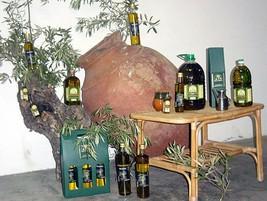 Fabricantes aceite en badajoz for Distribuidora de recambios badajoz