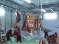 Fundas para carne