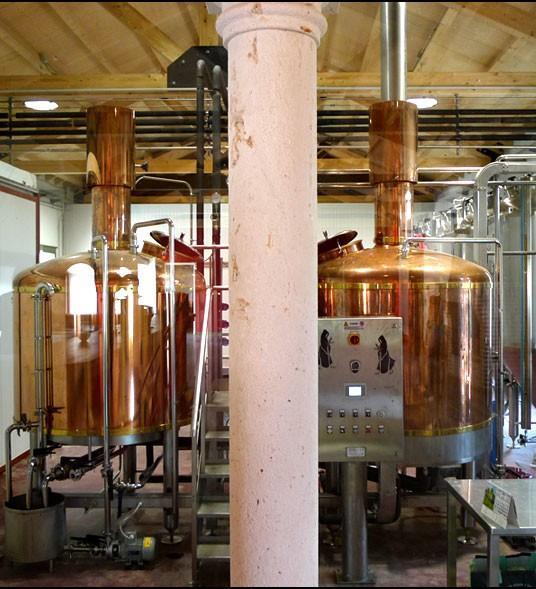 Cerveza artesanal. Amplia experiencia en cerveza artesanal