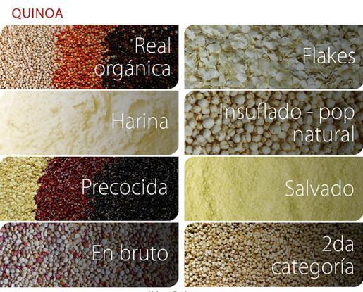 Quinoa.Contamos con quinoa en varios formatos directo de Bolivia