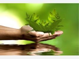 Proveedores Consultoría medioambiental