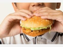 Proveedores Seguridad alimentaria