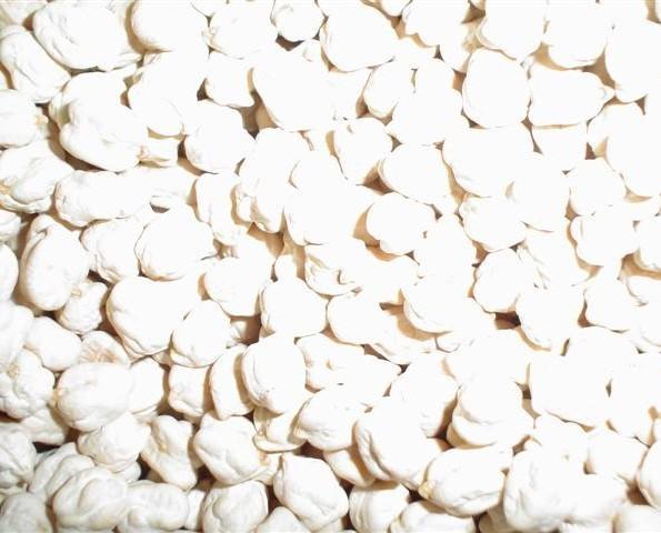Garbanzos.Muy rugoso y color blanco.