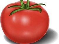 Tomate en polvo