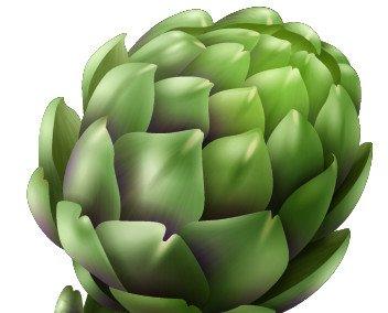 Hoja de Alcachofa. Hoja de alcachofa en polvo, idónea para su introducción en recetas que necesiten alta concentración de antioxidantes.