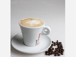 Proveedores Capppuccino Ciano