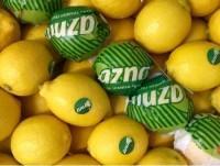 Limones extra