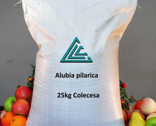 Alubias.Producto español