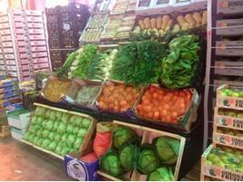 Verduras de todo tipo