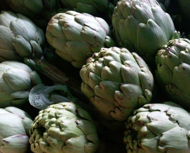 Alcachofa ecológica. Producto de calidad