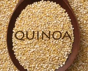 Quinoa andina. Quinoa a granel procedente de sudamérica