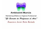 Ambiseint Murcia