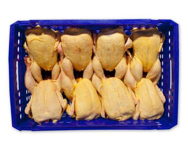 Pollo Entero. La producción avícola del Grupo se inicia en Pondex